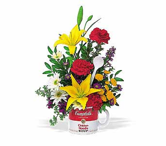 The Teleflora Campbell's� ''Get Well'' Bouquet in Oklahoma City OK, Array of Flowers & Gifts