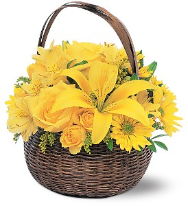Yellow Flower Basket in Kitchener ON, Camerons Flower Shop