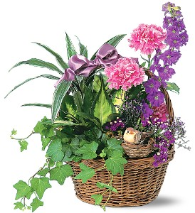 Garden Comforts in Yonkers NY, Beautiful Blooms Florist