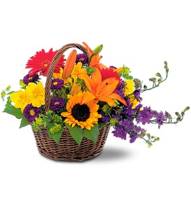 Basket of Blooms in Wake Forest NC, Wake Forest Florist