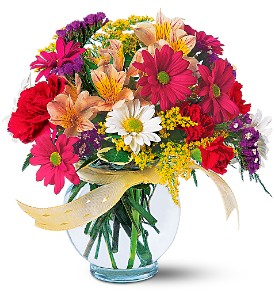 Joyful and Thrilling in Ajax ON, Reed's Florist Ltd