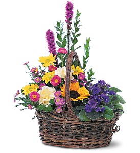 Basket of Glory in Buffalo Grove IL, Blooming Grove Flowers & Gifts