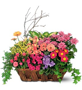 Deluxe European Garden Basket in Meriden CT, Rose Flowers & Gifts