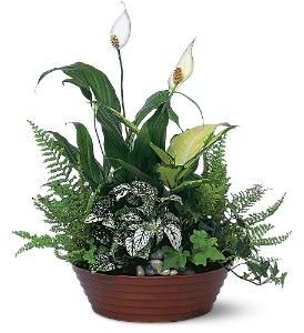White Garden in Wellington FL, Wellington Florist