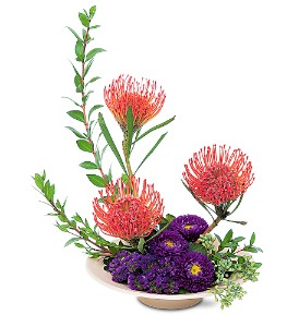 Protea Paradise in Fredonia NY, Fresh & Fancy Flowers & Gifts