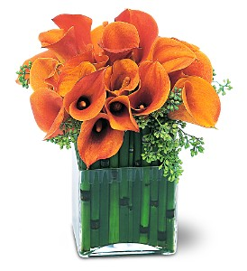 Bronze Callas in Needham MA, Needham Florist