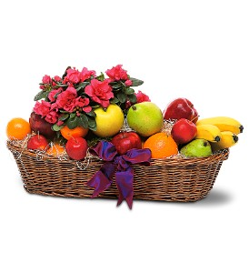 Plant and Fruit Basket in Wolfeboro Falls NH, Linda's Flowers & Plants