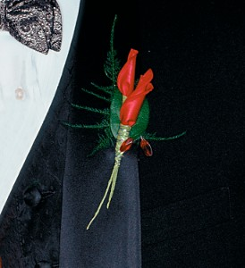 Red Rose Petals Boutonniere in Big Rapids MI, Patterson's Flowers, Inc.