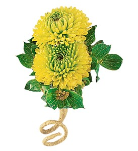 Chartreuse Chrysanthemum Boutonniere in Big Rapids MI, Patterson's Flowers, Inc.