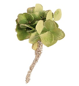 Green Hydrangea Boutonniere in Orlando FL, Harry's Famous Flowers