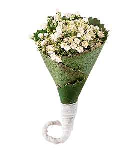 Rolled Gypsophila Boutonniere in Harrisonburg VA, Blakemore's Flowers, LLC
