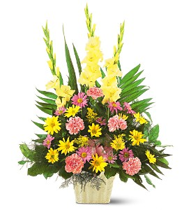 Warm Thoughts Arrangement in Abington MA, The Hutcheon's Flower Co, Inc.