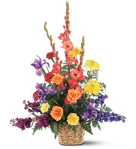 Rainbow Basket in Tulsa OK, Toni's Flowers & Gifts