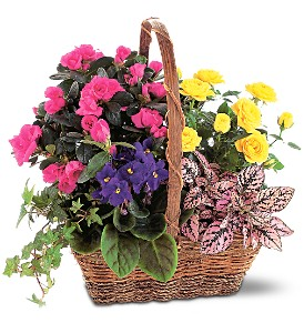 Blooming Garden Basket in Bend OR, All Occasion Flowers & Gifts