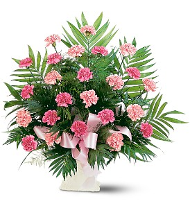 Classic Carnation Arrangement in Bend OR, All Occasion Flowers & Gifts