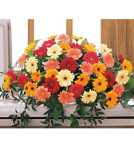 Uplifting Thoughts Casket Spray in Jamestown NY, Girton's Flowers & Gifts, Inc.