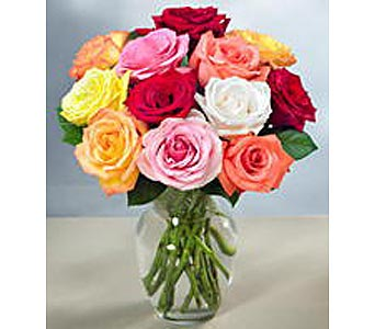 This Week's Best Selling Special in New Paltz NY, The Colonial Flower Shop
