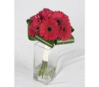 Gerbera Daisy Bouquet in St Catharines ON, Vine Floral