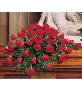 Blooming Red Roses Casket Spray in Calgary AB, All Flowers and Gifts