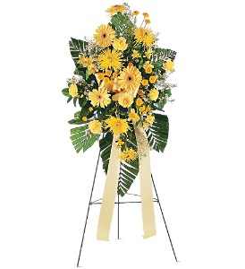 Brighter Blessings Spray in Oklahoma City OK, Capitol Hill Florist and Gifts