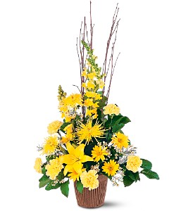 Brighter Blessings Arrangement in Oklahoma City OK, Array of Flowers & Gifts