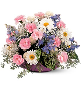 Pastel Dreams in Buffalo Grove IL, Blooming Grove Flowers & Gifts