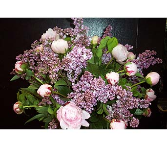 Blush Buddies in New York NY, Fellan Florists Floral Galleria