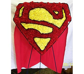 Superman cape in Orange City FL, Orange City Florist