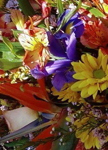 Designer's Choice Bright Arrangement in Burlington NJ, Stein Your Florist