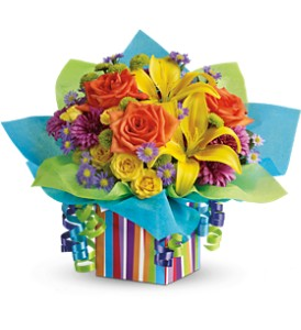 Teleflora's Rainbow Present in Palm Coast FL, Blooming Flowers & Gifts