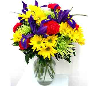 FF45 ''Colorful Collection'' Vase Arrangement in Oklahoma City OK, Array of Flowers & Gifts