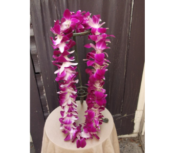 Single Bombay Lei in West Los Angeles CA, Westwood Flower Garden