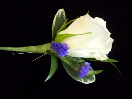 White and Purple in Farmington CT, Haworth's Flowers & Gifts, LLC.