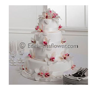 White & Pink Cymbidium Cake in Santa Monica CA, Edelweiss Flower Boutique