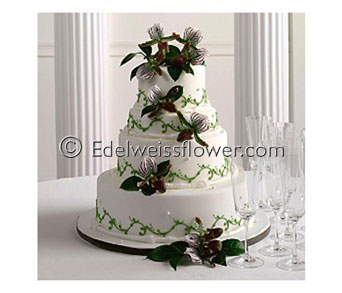 Slipper Orchid Wedding Cake Flowers in Santa Monica CA, Edelweiss Flower Boutique