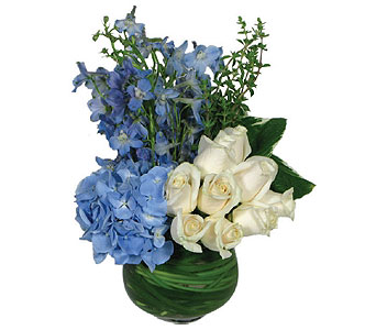 Signature Blue in New York NY, Fellan Florists Floral Galleria