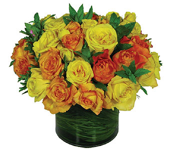 Summer Rose Cylinder in New York NY, Fellan Florists Floral Galleria