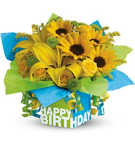 Teleflora's Sunny Birthday Present in Palm Coast FL, Blooming Flowers & Gifts