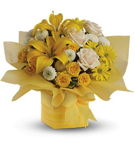 Teleflora's Sunshine Surprise in Philadelphia PA, Petal Pusher Florist & Decorators