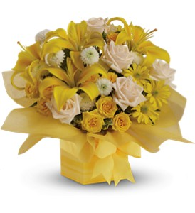 Teleflora's Sunshine Surprise - Deluxe in Hendersonville TN, Brown's Florist