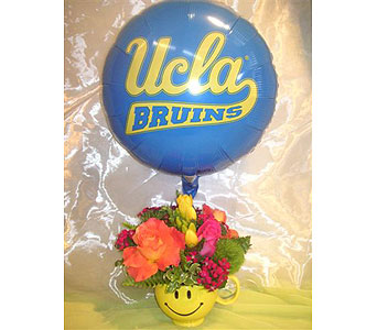 UCLA Cheer Mug Arrangement in West Los Angeles CA, Westwood Flower Garden