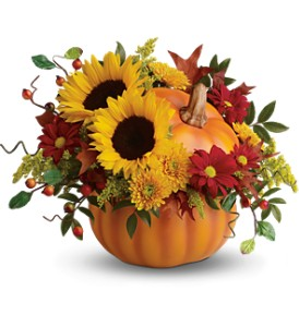 Teleflora's Pretty Pumpkin Bouquet in Skowhegan ME, Boynton's Greenhouses, Inc.