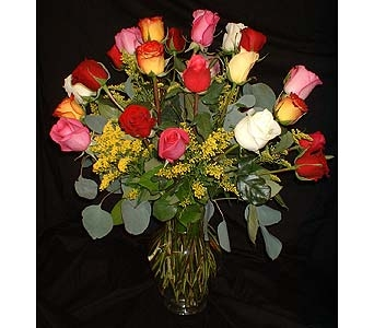24 Rainbow Roses - Colorful! in Dallas TX, Z's Florist