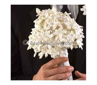 Whiite Stepahonitis with Pearls Bridal Bouquet in Santa Monica CA, Edelweiss Flower Boutique