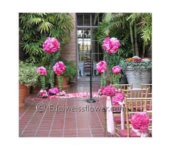 Pink Roses, Dahlia & Hydragea Ceremony in Santa Monica CA, Edelweiss Flower Boutique