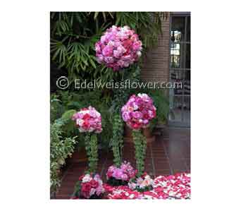 Ceremony Rose, Dahlia & Hydrangea Flowers in Santa Monica CA, Edelweiss Flower Boutique