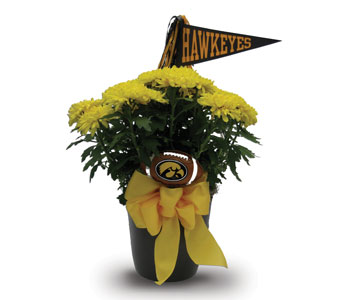 Hawkeye Touchdown in Des Moines IA, Doherty's Flowers