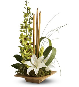 Teleflora's Bamboo Serenity in Detroit and St. Clair Shores MI, Conner Park Florist