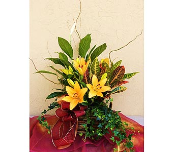 Planter with Lillies in Sunnyvale CA, Flowers By Sophia