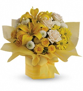 Teleflora's Sunshine Surprise Present in Crown Point IN, Debbie's Designs